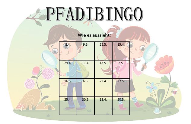 Pfadi Bingo